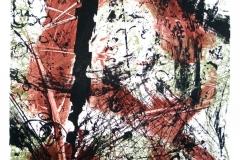 Lebensräume-Lithographie-02