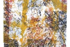 Lebensräume-Lithographie-03