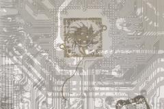 Lebensräume-Serigraphie-01
